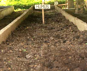 Humus international ag labs for Rich soil definition